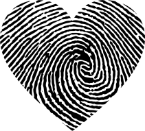 heart-2750394_1280.png