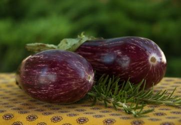 eggplant-3590866_1280
